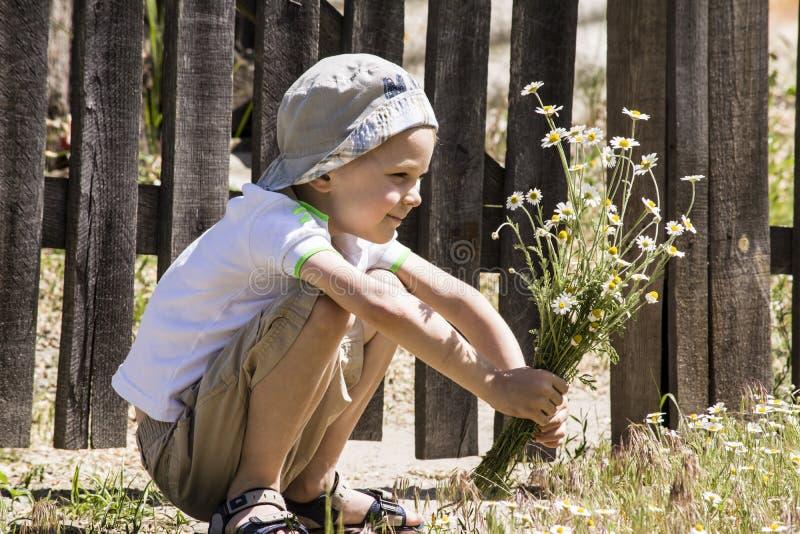 Αγόρι με μια ανθοδέσμη των μαργαριτών στοκ φωτογραφία με δικαίωμα ελεύθερης χρήσης