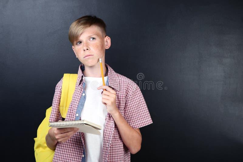 Αγόρι με το σημειωματάριο και τη μάνδρα στοκ φωτογραφίες με δικαίωμα ελεύθερης χρήσης