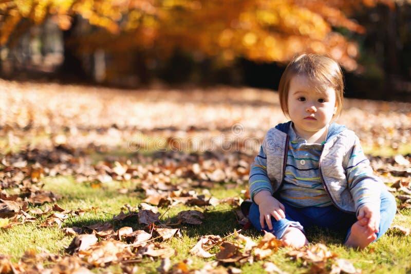 Αγόρι μικρών παιδιών που παίζει έξω στοκ φωτογραφία