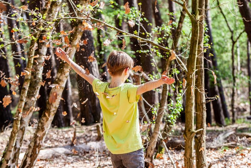Αγόρι που ρίχνει τα φύλλα από το περασμένο φθινόπωρο την άνοιξη στοκ φωτογραφία με δικαίωμα ελεύθερης χρήσης