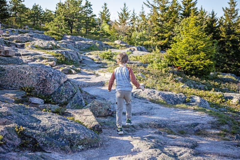 Αγόρι που το εθνικό πάρκο Acadia στοκ εικόνες με δικαίωμα ελεύθερης χρήσης