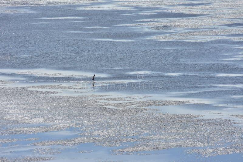 Αγόρι που τρέχει στα ασημένια αμμώδη επίπεδα στοκ εικόνες