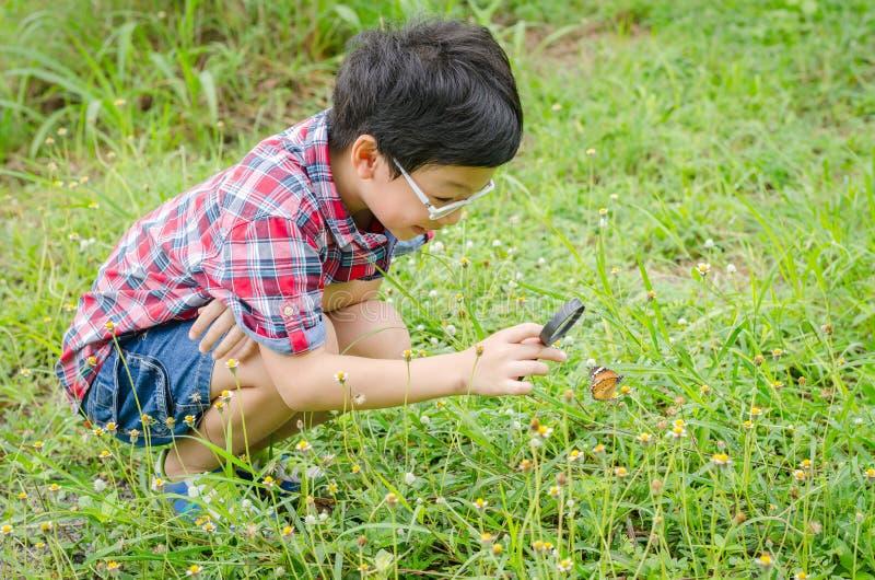 Αγόρι που χρησιμοποιεί την ενίσχυση - γυαλί στην παρατήρηση της πεταλούδας στοκ εικόνα