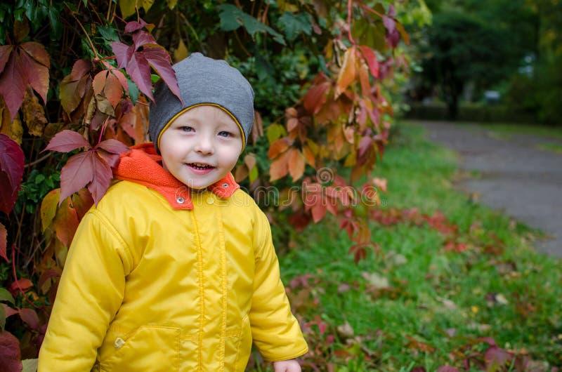 αγόρι φθινοπώρου λίγο πάρκ στοκ φωτογραφίες με δικαίωμα ελεύθερης χρήσης