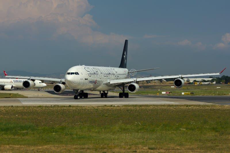 Αεροπλάνο airbus συμμαχίας αστεριών A340 στοκ φωτογραφία