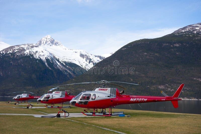 Αεροσκάφη που χρησιμοποιούνται για την επίσκεψη σε skagway στοκ φωτογραφίες