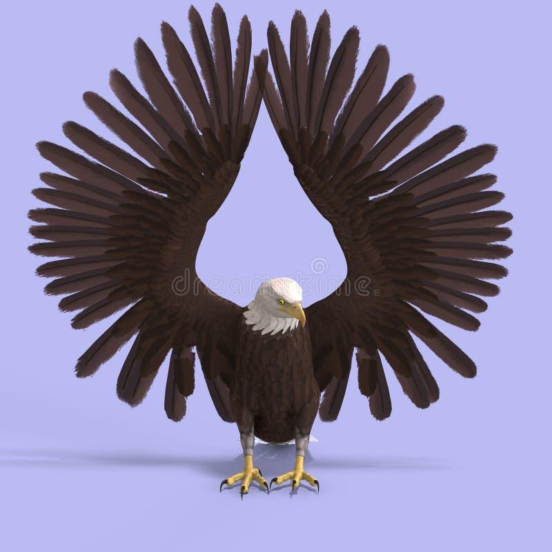 αετός μεγάλος ελεύθερη απεικόνιση δικαιώματος