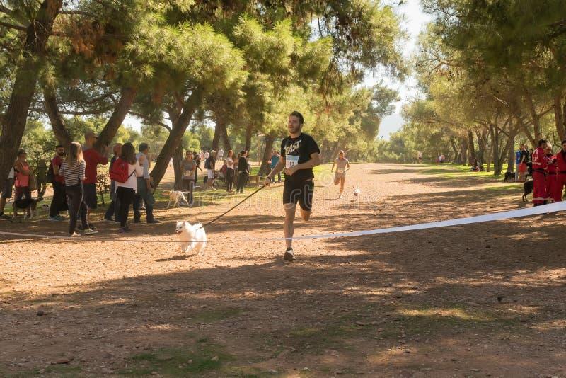 Αθήνα, Ελλάδα στις 4 Οκτωβρίου 2015 Το άτομο έτοιμο να διασχίσει τη γραμμή λήξης στον ανταγωνισμό τρέχει με το σκυλί σας στην Ελλ στοκ φωτογραφία με δικαίωμα ελεύθερης χρήσης