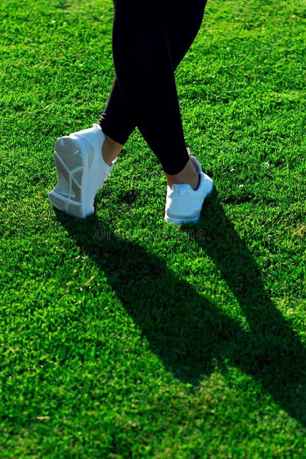 Αθλητικά πόδια της νέας αθλητικής γυναίκας στα σκοτεινά καλσόν και το φως sne στοκ φωτογραφίες