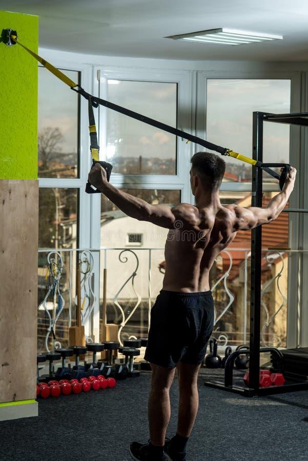 Αθλητισμός και έννοια γυμναστικής Το άτομο με το κορμό, αθλητικός τύπος, αθλητής, μυϊκός φαλλοκράτης ασκεί με τους βρόχους trx, π στοκ εικόνες με δικαίωμα ελεύθερης χρήσης