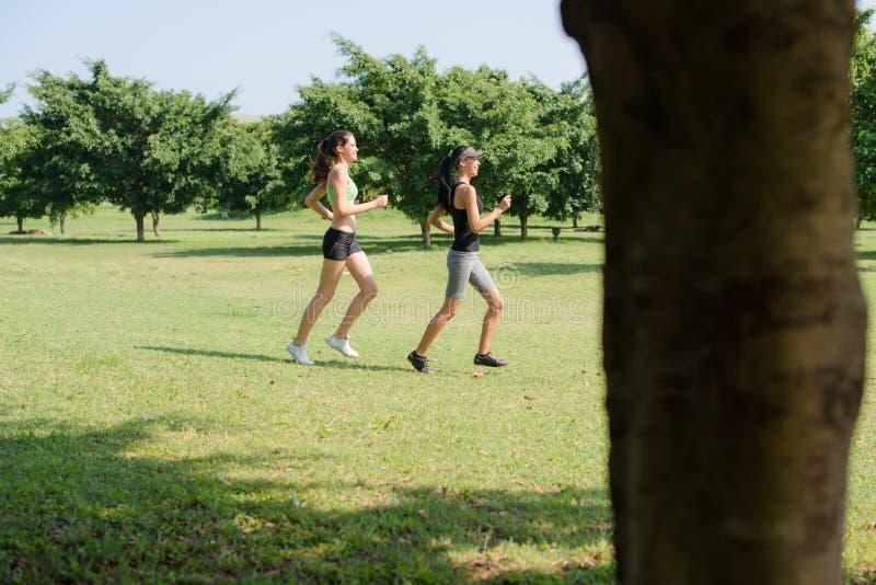 Αθλητισμός με δύο νέες γυναίκες που στο πάρκο πόλεων στοκ εικόνα με δικαίωμα ελεύθερης χρήσης