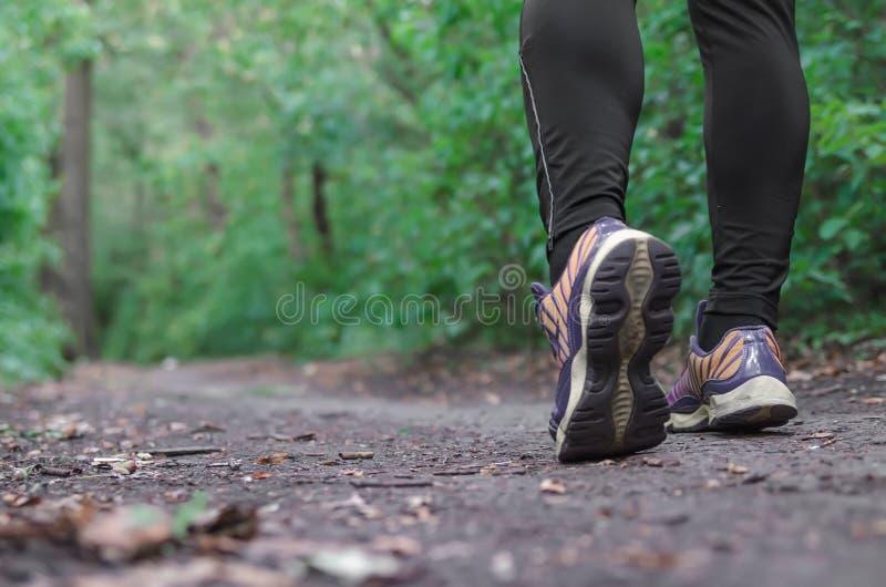 Αθλητικά παπούτσια που περπατούν ή που στην πράσινη χλόη, διαγώνια χώρα δρομέων ατόμων που τρέχει στο ίχνος αρσενική κατάρτιση θε στοκ φωτογραφίες