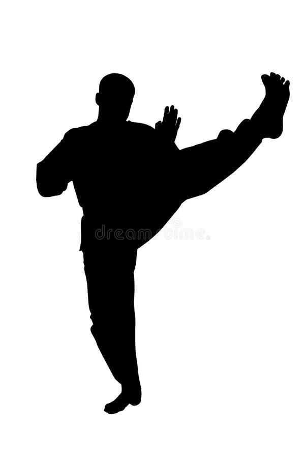 Αθλητική σκιαγραφία, Karate λάκτισμα στοκ φωτογραφίες με δικαίωμα ελεύθερης χρήσης