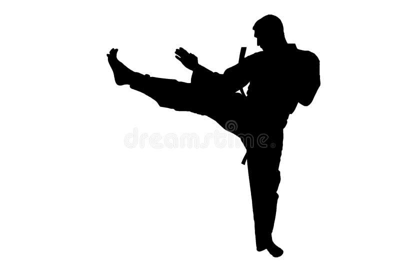 Αθλητική σκιαγραφία, Karate λάκτισμα στοκ φωτογραφία με δικαίωμα ελεύθερης χρήσης