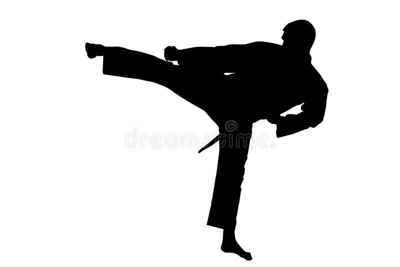 Αθλητική σκιαγραφία, Karate λάκτισμα στοκ φωτογραφία