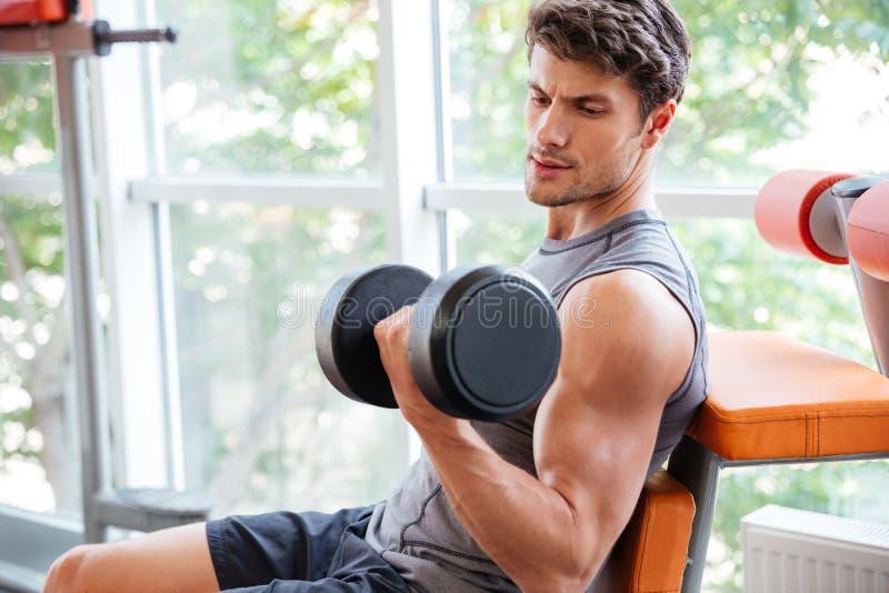 Αθλητικός τύπος που κάνει τις ασκήσεις για τους δικέφαλους μυς που χρησιμοποιούν τους αλτήρες στο jym στοκ εικόνες