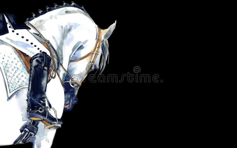 Αθλητικό άλογο εκπαίδευσης αλόγου σε περιστροφές με τον αναβάτη Απεικόνιση αλόγων Watercolor διανυσματική απεικόνιση