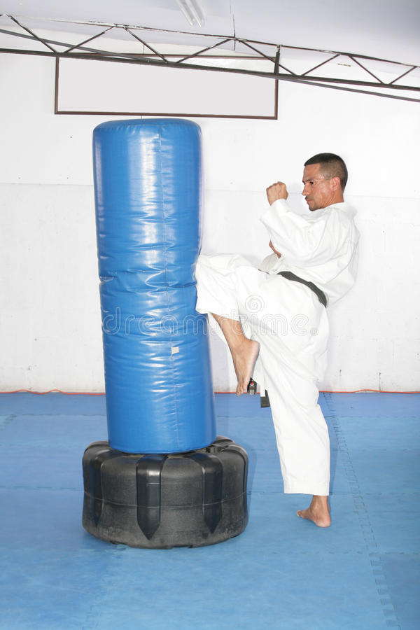 Αθλητικό μαύρο karate ζωνών που δίνει ένα ισχυρό λάκτισμα γονάτων κατά τη διάρκεια του α στοκ εικόνες με δικαίωμα ελεύθερης χρήσης