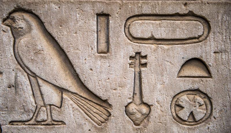 αιγυπτιακά hieroglyphs διανυσματική απεικόνιση