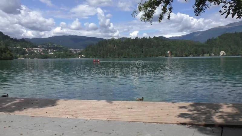 αιμορραγημένη λίμνη στη Σλοβενία 134105 απόθεμα βίντεο