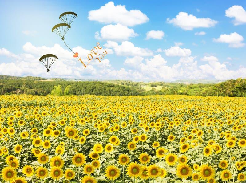 Αισθανθείτε ελεύθερος να πετάξει, να σας αγαπήσει με την καρδιά στοκ εικόνες