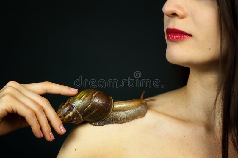 Αισθησιακή όμορφη νέα γυναίκα με ένα σαλιγκάρι Ahatin στον ώμο της που λαμβάνει μια διαδικασία Cosmetological Έννοια SPA στοκ εικόνες