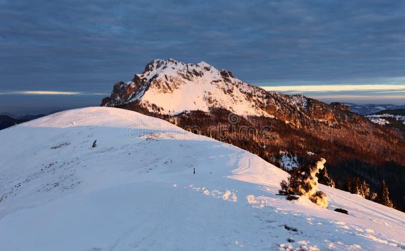 Αιχμή βουνών φύσης στο χειμώνα - Σλοβακία, πανόραμα στοκ εικόνες