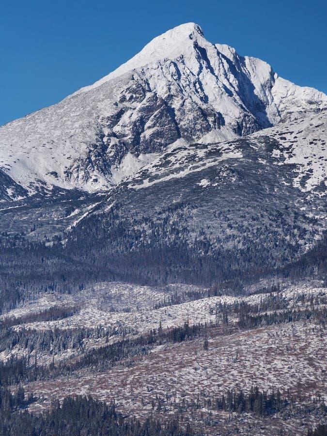 Αιχμή Krivan σε σλοβάκικο υψηλό Tatras στο χειμώνα στοκ φωτογραφία