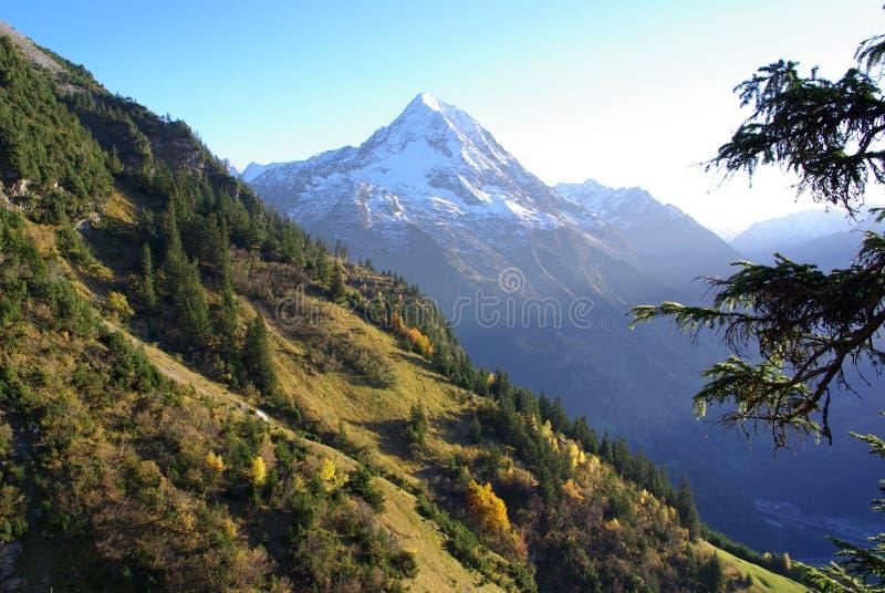 Αιχμή Oberalpstock στοκ φωτογραφία
