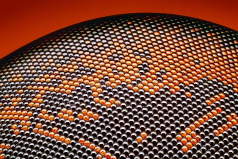 Αιχμηρή και λεπτομερής ξηρά νεκρή επιφάνεια ματιών μυγών σύνθετη στην ακραία ενίσχυση 20x που λαμβάνεται με το στόχο μικροσκοπίων στοκ εικόνες