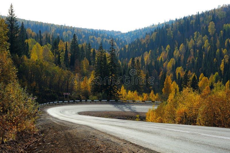 Αιχμηρή οδική κάμψη στο δάσος φθινοπώρου στοκ εικόνες