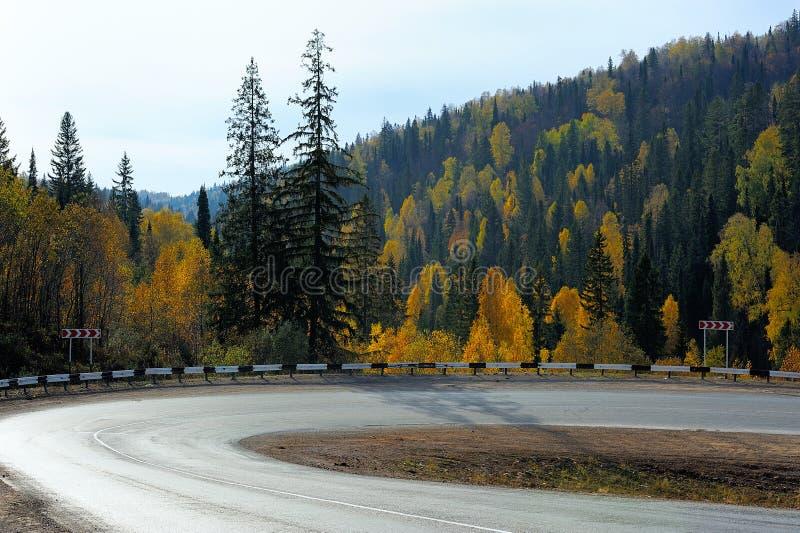 Αιχμηρή οδική κάμψη στο δάσος φθινοπώρου στοκ φωτογραφία με δικαίωμα ελεύθερης χρήσης