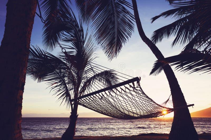 Αιώρα Tripical στο ηλιοβασίλεμα στοκ εικόνες με δικαίωμα ελεύθερης χρήσης