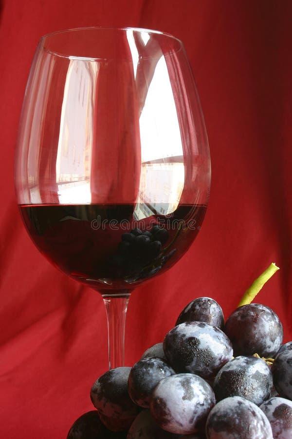 ακίνητο κρασί ζωής στοκ εικόνα με δικαίωμα ελεύθερης χρήσης