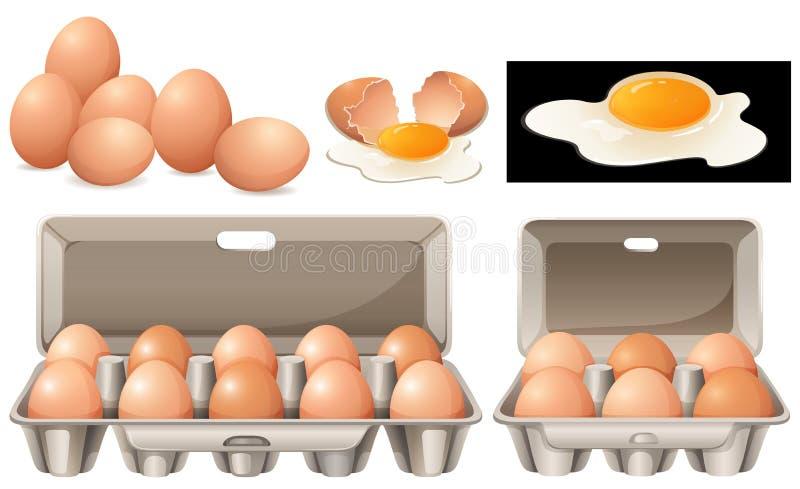 Ακατέργαστα αυγά στις διαφορετικές συσκευασίες απεικόνιση αποθεμάτων