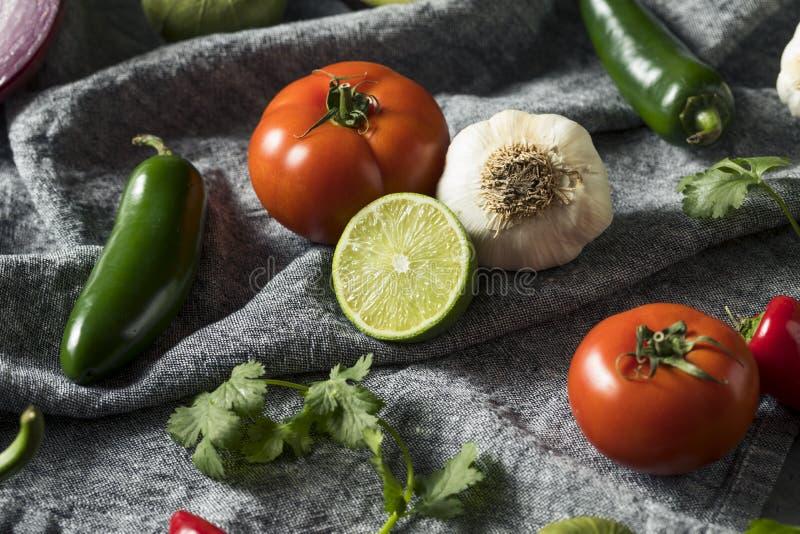 Ακατέργαστα οργανικά υγιή μεξικάνικα λαχανικά και χορτάρι στοκ φωτογραφία