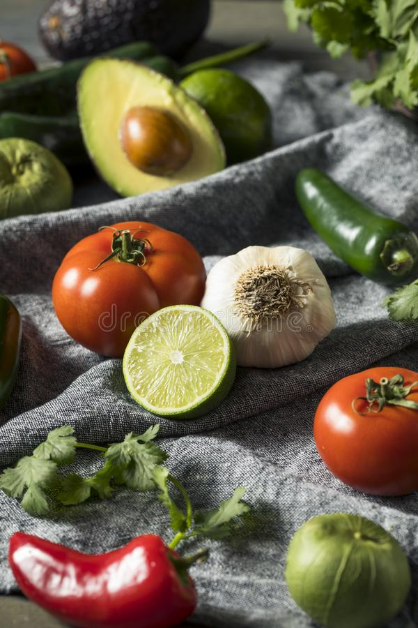 Ακατέργαστα οργανικά υγιή μεξικάνικα λαχανικά και χορτάρι στοκ φωτογραφίες