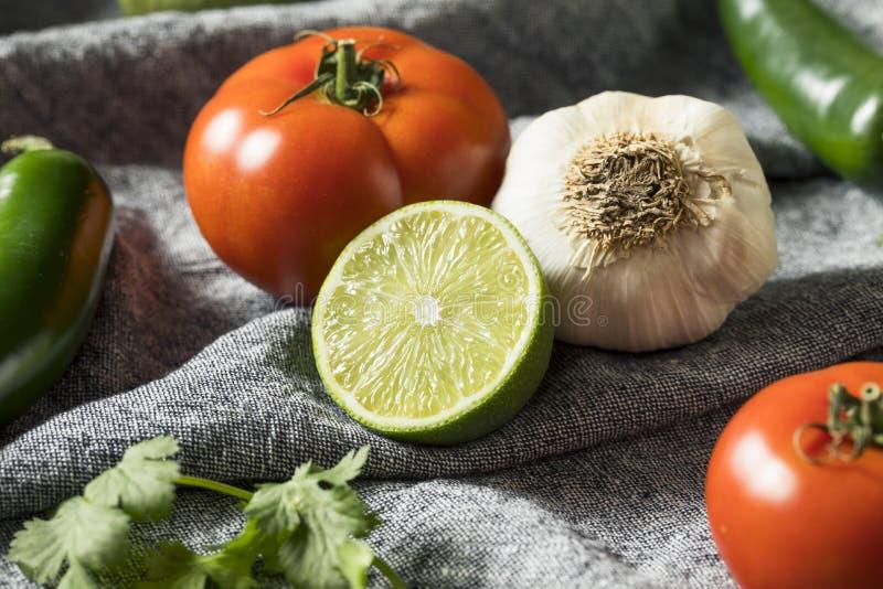 Ακατέργαστα οργανικά υγιή μεξικάνικα λαχανικά και χορτάρι στοκ εικόνα