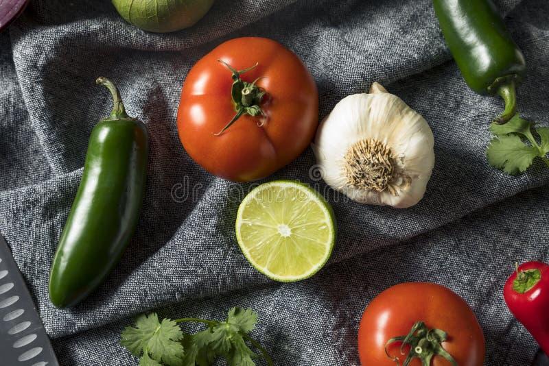Ακατέργαστα οργανικά υγιή μεξικάνικα λαχανικά και χορτάρι στοκ εικόνες με δικαίωμα ελεύθερης χρήσης