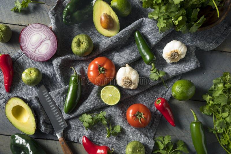 Ακατέργαστα οργανικά υγιή μεξικάνικα λαχανικά και χορτάρι στοκ εικόνα με δικαίωμα ελεύθερης χρήσης