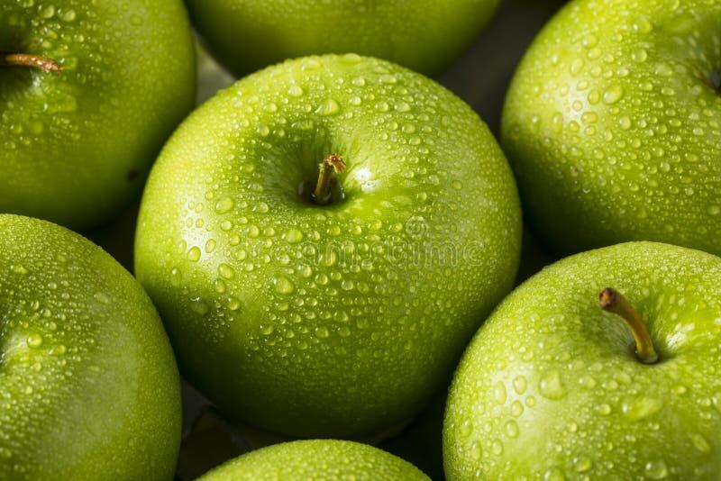 Ακατέργαστα πράσινα οργανικά μήλα Γιαγιάδων Σμίθ στοκ εικόνα