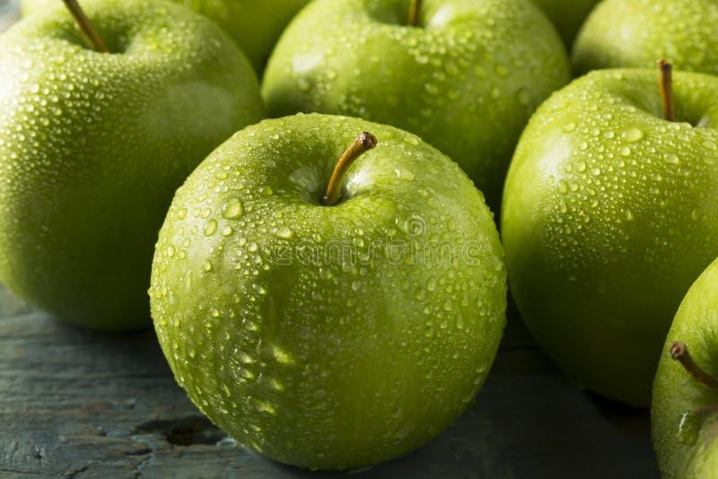 Ακατέργαστα πράσινα οργανικά μήλα Γιαγιάδων Σμίθ στοκ εικόνα με δικαίωμα ελεύθερης χρήσης