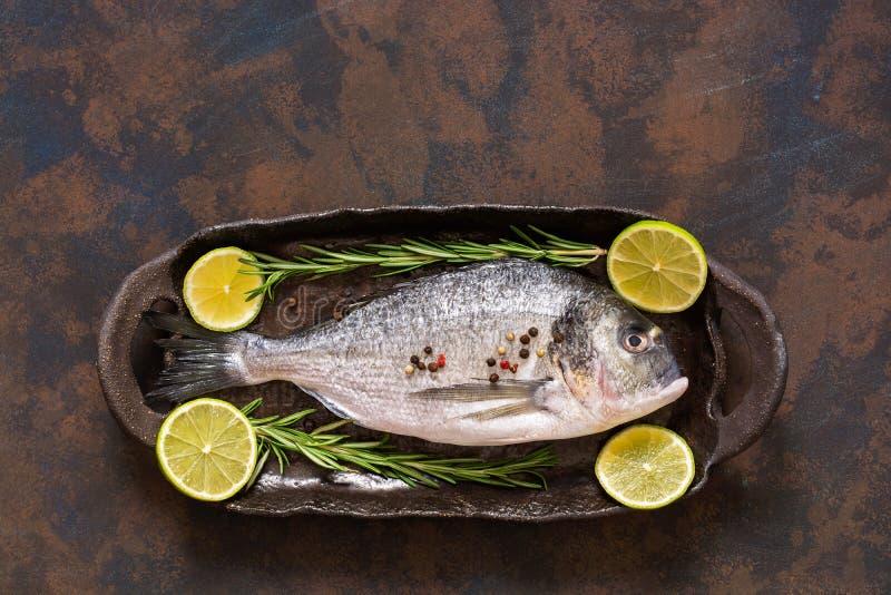 Ακατέργαστα φρέσκα ψάρια με τις φέτες και το δεντρολίβανο ασβέστη Μια τοπ άποψη, μια θέση για το κείμενό σας ή διαφήμιση στοκ φωτογραφία με δικαίωμα ελεύθερης χρήσης