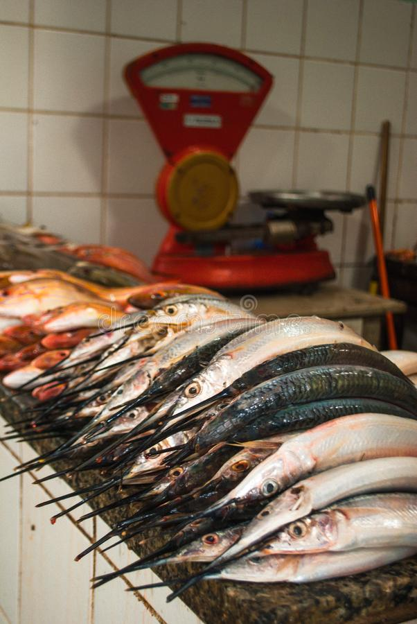 Ακατέργαστα ψάρια στο μπαλκόνι για την πώληση στοκ φωτογραφία με δικαίωμα ελεύθερης χρήσης