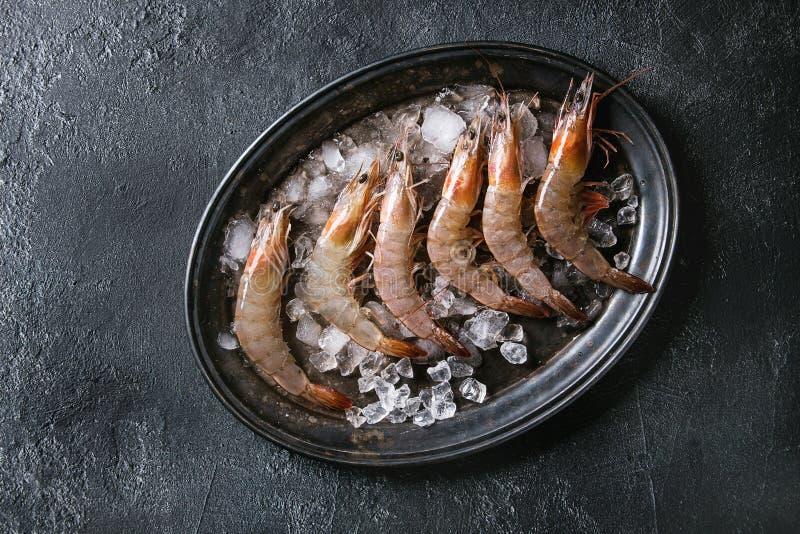 Ακατέργαστες άψητες γαρίδες γαρίδων στοκ εικόνες
