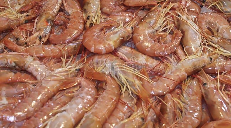 Ακατέργαστες γαρίδες στον πάγο σε μια αγορά τροφίμων στοκ φωτογραφία με δικαίωμα ελεύθερης χρήσης