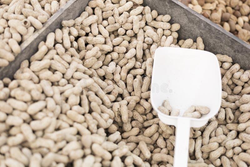 Ακατέργαστη επιλογή των φυστικιών με την άσπρη σέσουλα στοκ φωτογραφία με δικαίωμα ελεύθερης χρήσης