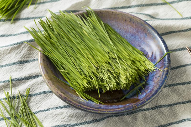 Ακατέργαστη πράσινη οργανική χλόη σίτου στοκ εικόνες