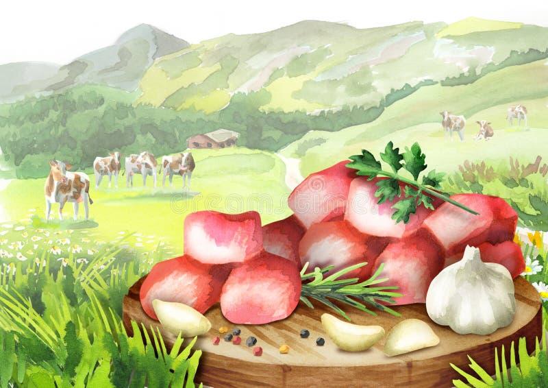 Ακατέργαστοι φρέσκοι πικάντικοι κύβοι βόειου κρέατος με τα χορτάρια και καρυκεύματα σε ένα πιάτο στο τοπίο με τις αγελάδες ελεύθερη απεικόνιση δικαιώματος