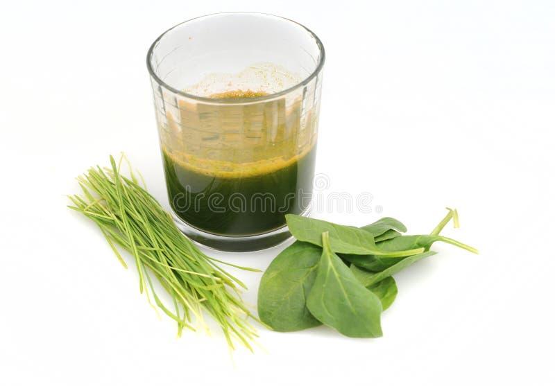 Ακατέργαστος πράσινος χυμός χλόης σπανακιού και σίτου στοκ εικόνες με δικαίωμα ελεύθερης χρήσης